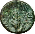 Reverse image of coin 14