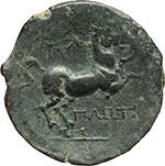 reverse:  Apulia, Salapia   AE 20 mm, ca. 225-210 a.C.