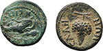 reverse:  Domitia, wife of Domitian (Augusta, 82-96 AD). Lot of 2 provincial AE: AE 15 mm, Magnesia ad Sipylum, Ionia (RPC 896. SNG Cop. 259) and AE 16 mm, Sala, Lydia (RPC 1345. SNG Cop. 437).