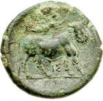 reverse:  Campania, Neapolis   AE Litra, ca. 275-250 a.C.