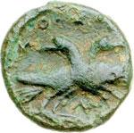 reverse:  Lucania, Laus   AE 14 mm. V secolo a.C.