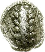 obverse:  Lucania, Metapontum   Obolo, 212-207 a.C.