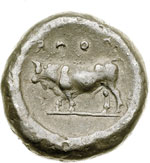 reverse:  Lucania, Poseidonia   Nomos, 480-400 a.C.