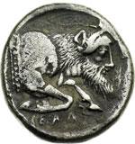 reverse:  Gela   Didracma, 490-475 a.C.