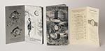 "obverse: ROLEX, ""Rolex Oyster"" catalog, 1940."