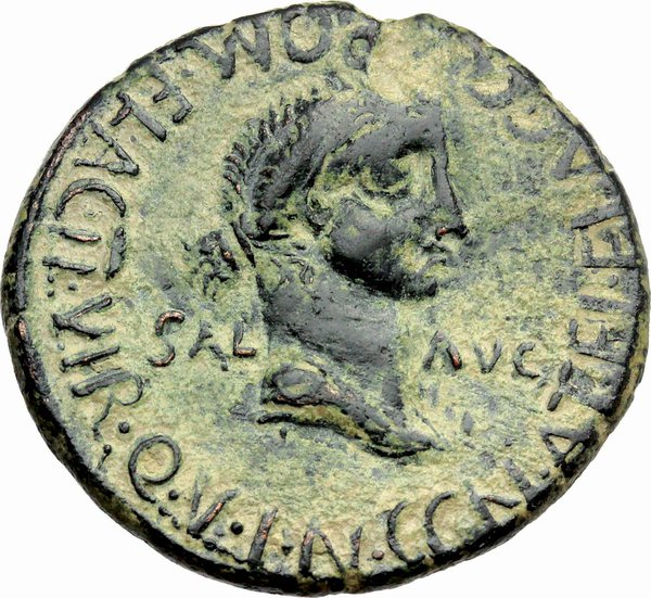 Reverse image of coin 206