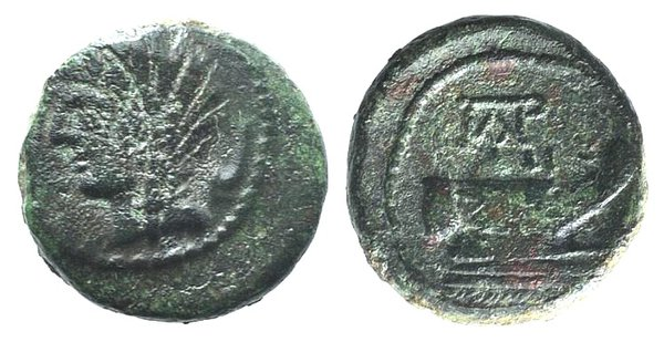 obverse: Sicily, Panormos, after 241 BC. Æ