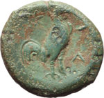 Reverse image of coin 8010