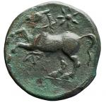 R/ Mondo Greco - Apulia. Arpi. ca 217-213 a.C. Ae. D/ Testa di Zeus verso destra. R/ Cavallo al galoppo verso sinistra, sopra una stella, sotto monogramma. Peso gr. 3,68. Diametro mm. 16,7. BB-SPL. Patina verde.