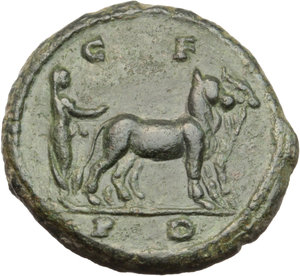 Diadumenian (218 AD).  AE 19 mm. Deultum mint, Thrace. Obv. M OPEL ANTONINVS DIADV C. Bare-headed, draped and cuirassed bust right. Rev. C-F/P-D. Priest ploughing right with two oxen. Varbanov 2230 var. (obverse legend). AE. g. 4.79   RR. Very rare and superb. An outstanding example. Lovely dark green patina. EF. Ex Helios 8, lot 345.