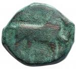 obverse: Mondo Greco - Apulia. Salapia.ca. 275-250 a.C. Æ. D/ Cavallo a destra. R/ Delfino a sinistra. Cf. HN Italy 685. Diametro 16,82 mm. Peso 7,29 gr.BB. Patina verde. Imitazione barbarica? R.