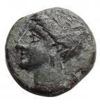 obverse: Mondo Greco - Siculo Punica. dopo il 400 a.C.Ae. D/ Testa di Kore verso sinistra. R/ Cavallino e dietro una palma. Peso 2,27 gr. Diametro 14,95.BB++.
