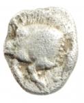 reverse: Mondo Greco. Misia. Cizico. 480-450 a.C. Obolo. Ag. D/ Cinghiale a sinitra, a destra tonno. R/ Testa di leone in quadrato incuso. Sear 3846. Peso 0,81 gr. Diametro 8,00 mm. BB.w