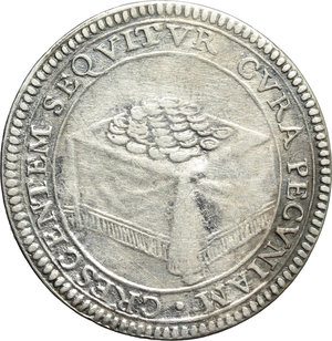 Reverse image of coin 570