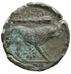 R/ Mondo Greco -Apulia. Teate.Dopo il 220 a.C.Quadrunx.AE.D/ Testa di Eraclea destra.R/ Leone andante verso destra, sopra clava e TIATI sotto stella e 4 globetti.Peso12,65 gr.Diametro24,25 mm. qBB-BB. R.