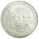 R/ Monete Estere. USA. Oncia 2000. Peso 31,20 gr. Diametro 40,00 mm. FDC.