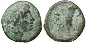 obverse image: Sicily. Alaisa Archonidea. 204-200 BC. Bronze. Æ 15mm -  4,82g. O:\ Laureate head of Apollo right. R:\ ΑΛΑΙΣΑΣ, Apollo standing left, holding filleted laurel branch with right hand and leaning on kithara to left, monogram to left. Campana 18; BAR Issue 6 (Halaesa); CNS 7; HGC 2, 199; Virzi 742. aXF. Rare