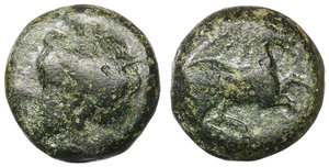 obverse image: Zeugitania. Carthage. 400-350 BC. Bronze Æ 4,65  gr. - 13,8 mm. O:\ Wreathed head of Tanit left. R:\ Horse galloping right. SNG Copenhagen 97. XF