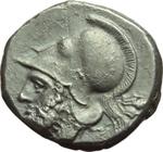 obverse:   Didracma, 280-276 a.C. Metapontum?