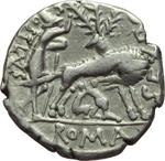 reverse:  Sex. Pompeius Fostlus. Denario, 137 a.C.