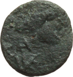 obverse:  I Vandali in Nord Africa. Trasamundo (496-523). Nummus.