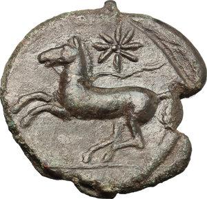 reverse: Sicily. Kainon.   AE 23mm, circa 365 BC. Obv. Griffin springing left; below, grasshopper left. Rev. Horse prancing left, trailing rein; star above. CNS I, 10. AE. g. 7.62  mm. 23.00    EF.