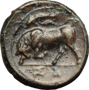 reverse: Sicily. Syracuse. Agathokles (317-289 B.C.).  AE 18mm, circa 317-310 BC. Obv. Wreathed head of Kore left; behind, ear of corn. Rev. Bull butting left; above, dolphin; in exergue, ΣΑ. CNS III, 101. AE. g. 3.61  mm. 18.00    EF.