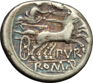 reverse: Furius Purpurio.  AR Denarius, 169-158 BC. Obv. Helmeted head of Roma right; behind, X. Rev. Luna in biga right; murex shell above, PVR below; in exergue, ROMA in linear frame. Cr. 187/1. B. 13. AR. g. 3.88  mm. 18.00   Prettily toned with iridescent hues. VF.