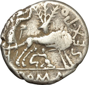 reverse: Sex. Pompeius Fostlus.  AR Denarius, 137 BC. Obv. Helmeted head of Roma right; below chin, X; behind, jug. Rev. SEX.PO FOSTLVS. She-wolf suckling twins; behind, Ficus Ruminalis; in left field, the shepherd Faustulus leaning on staff; in exergue, ROMA. Cr. 235/1c. B.1. AR. g. 3.96  mm. 19.50   Full weight. Light cabinet tone. VF.