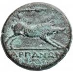 reverse: Mondo Greco - Apulia. Arpi.ca 325-250 a.C.Ae. D/ testa di Zeus a sinistra. R/ Cinghiale a destra, sopra lancia. HN Italy 642.Pesogr. 7,81. Diametro mm. 19,5 x 20,1. BB-qSPL.