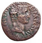 obverse: Impero Romano - Tiberio. 14 a.C.- 37 d.C.Asse. Ae. D/ TI CAESAR AVGVST F IMPERAT Testa di Tiberio verso destra. R/ PONTIFEX TRIBVN POTESTATE XII nel campo SC. Coh.27. Peso 9,63 gr. Diametro 27,8 mm. MB-qBB.