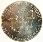 obverse: Monete Estere. Stati Uniti.1991. 1 Oz. In confezione originale.FDC.s.v.