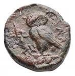 reverse: Mondo Greco - Sicilia.Camarina.ca425-405 a.C.Tetras.Ae. Pesogr. 3,79.Diametromm. 14,7. BB+.