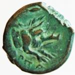 reverse: Mondo Greco. Apulia. Arpi. ca. III sec. a.C. Ae. D/ Testa di Zeus verso sinistra. R/ Protome di cinghiale verso destra. Peso 3,35 gr. Diametro 14,00 mm. SPL. R. §