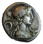 calpurnia denario suberato ?