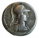 vibio varo denario