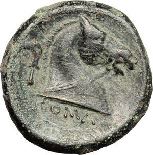 reverse: Anonymous.  AE Litra, c. 241-235 BC. Obv. Helmeted head of clean-shaven Mars right. Rev. Horse s head right; behind, sickle; beneath, ROMA. Cr. 25/3. AE. g. 3.24  mm. 17.00   Earthen dark green patina. VF/Good VF.