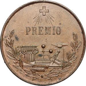 reverse:  Medaglia premio Scuola Matteo Cividali - Lucca.     AE.   mm. 36.00    BB.
