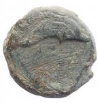reverse: Mondo Greco - Apulia. Salapia. 275-250 a.C.AE. D:/ Cavallo a destra con la zampa anteriore sollevata R:/ Delfino a destra. SNG ANS 733. g 7,44. mm 19,1. BB. Patina verde intenso