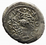 cordia denario