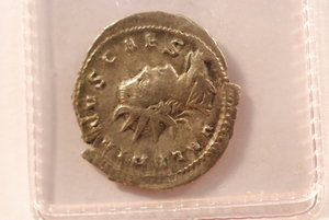 obverse: SALONINO (259) - Antoniniano