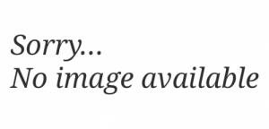 obverse: Paolucci Riccardo. Storia di una rarità medievale del Nord-est: il denaro di Latisana. Milano, 2018 estratto da Cronaca Numismatica (NON SI ACCETTANO RESI)