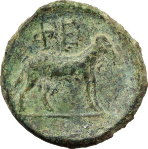 Reverse image of coin 115