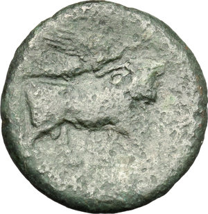 Reverse image of coin 28
