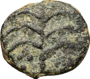 Reverse image of coin 546