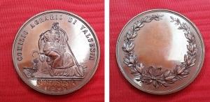 obverse: BORGOSESIA (VC). 1896. Comizio Agrario di Valsesia. Cu (40,60 gr. – 44 mm). SPL+. R2.