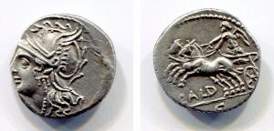 obverse: gens COELIA (189-180 a.C.). AR Denarius (3,83 gr.). D.\: CALD C. SPL. NC.