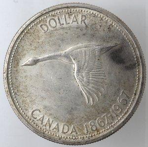 reverse: Monete Estere. Canada. Dollaro 1967. Ag. Peso 23,42 gr. BB+.