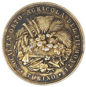 D/ Medaglie. Torino. Medaglia 1907. Ag. D/ SOCIETA' ORTO AGRICOLA DEL PIEMONTE TORINO. R/ A Panetto Luigi 1907. Peso gr. 13,77. Diametro mm. 30. SPL+.
