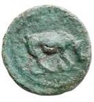 obverse: Impero Romano - Domiziano 81-96 d.C.Quadrante. D/ IMP DOMIT AVG GERM Nel campo SC. R/ Rinoceronte verso destra. Peso 1,95 g. Diametro 16,2 x 16,7 mm. BB+. Patina verde. R